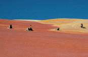 Damas del desierto